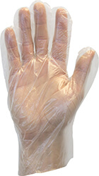 Clear polyethylene, powder-free glove.